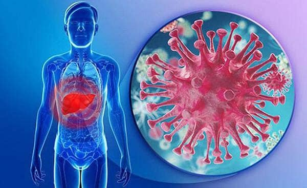 Người bị viêm gan B nên tầm soát ung thư gan
