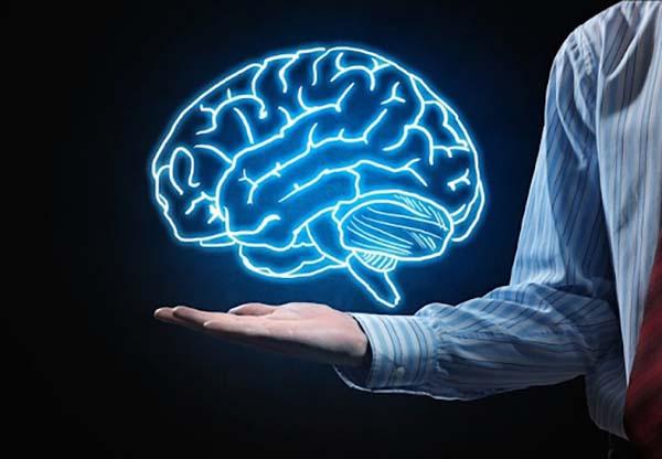 Cá hồi giúp tăng cường chức năng của hệ thần kinh và trí não